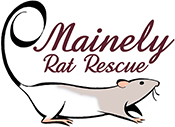 Mainely Rat Rescue Logo